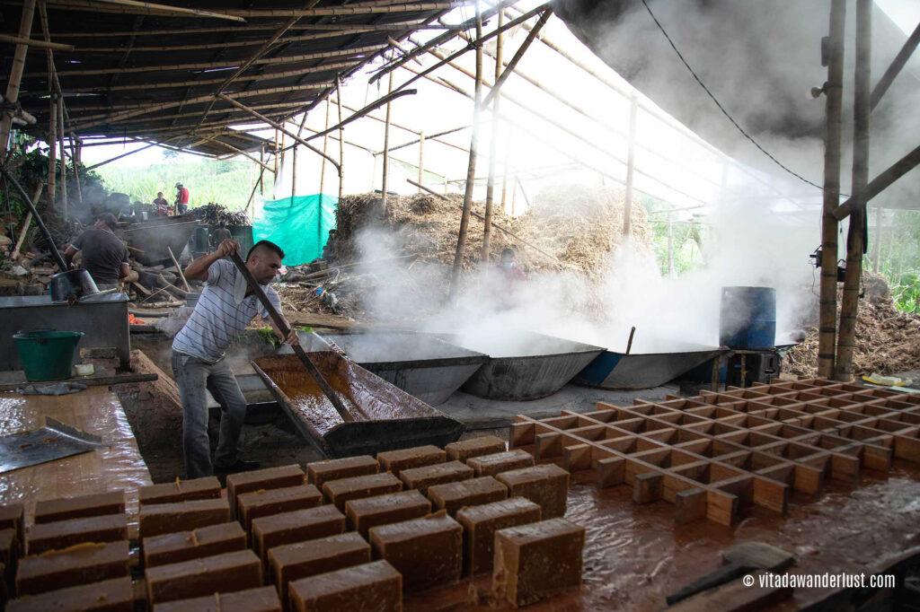 Produzione di panela