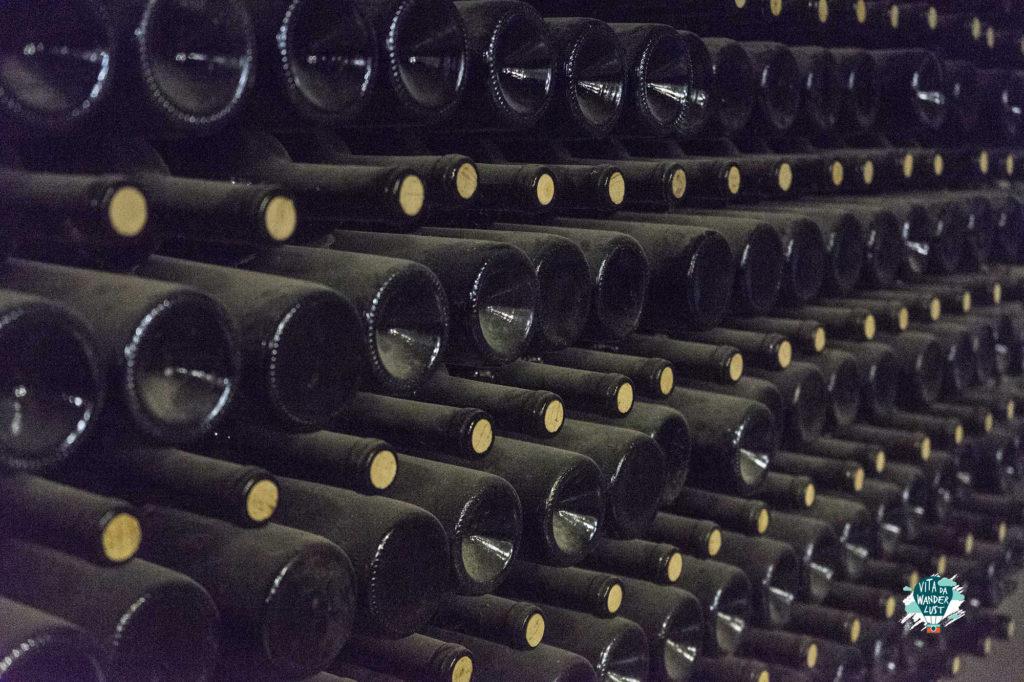 Vino cantina azienda vinicola