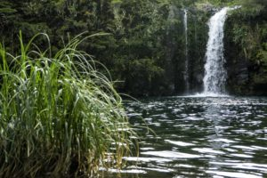 Cascada-Los-Novios